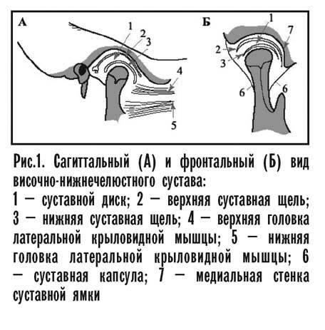 Височно-нижнечелюстной сустав