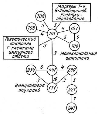 """Рис. 6. Тематические поля кластеров  """"Получение моноклональных антител """" и  """"Иммунология опухолей """"."""