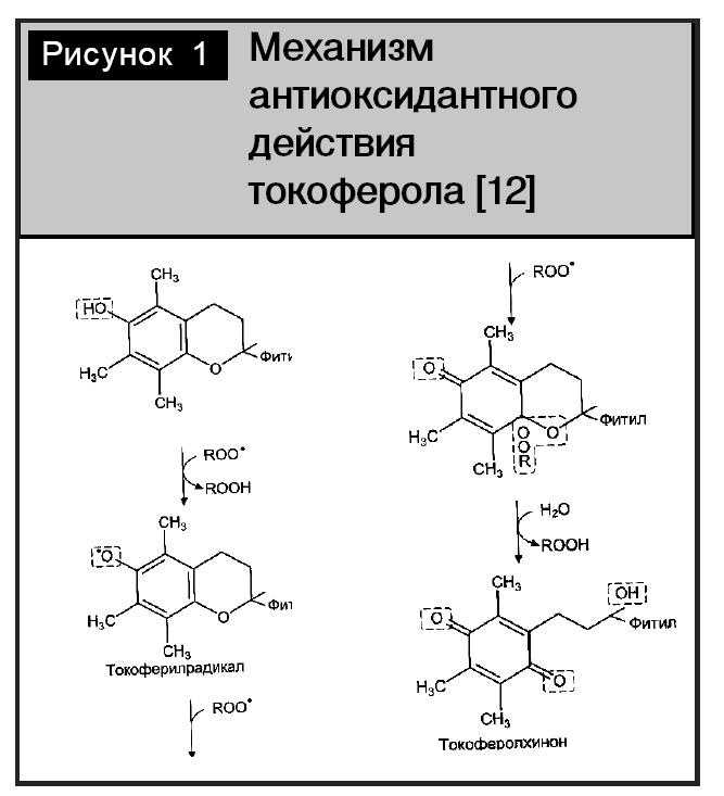 Изучение Лекарственных Веществ фото